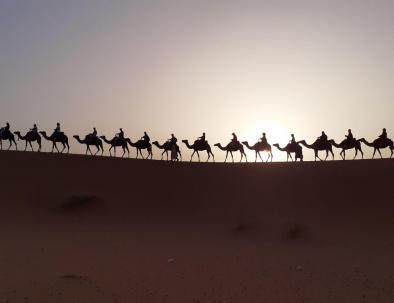 paseos en camello en Marruecos, glamping y trekking en el desierto