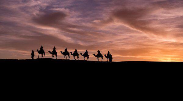 camellos con 3 días de ruta por el desierto desde Fez a Marrakech