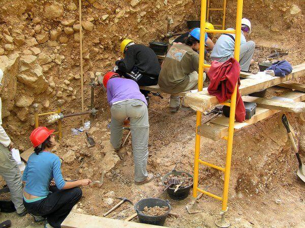 fósiles en Erfoud Marruecos