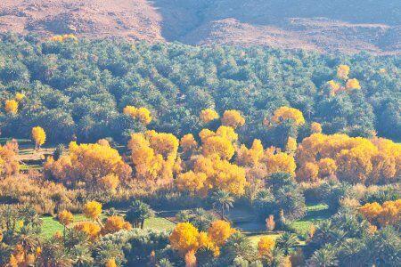 La valle de Ziz con viaje de 4 días en Marruecos Desde Fez a Marrakech
