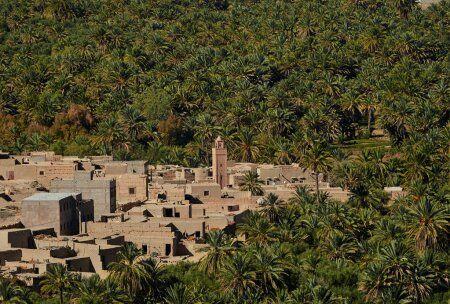 Ziz valley Marruecos
