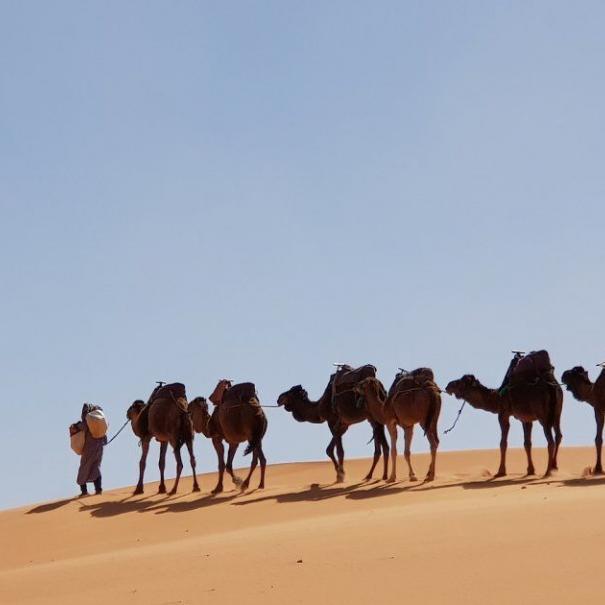 La photo de nuestro 9 dias itinerario en Marruecos