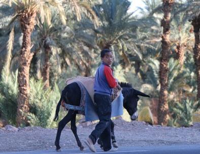 Marrakech 6 dias al desierto de Merzouga y Fez