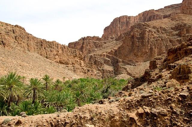Valle de Ziz con nuestro Circuito de 5 dias desde Marrakesh a Fez via Al desierto de Merzouga.