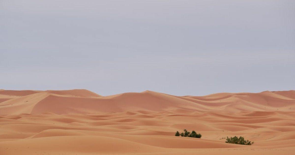 Viaje de 6 dias en Marruecos desde Marrakech al desierto y Fez