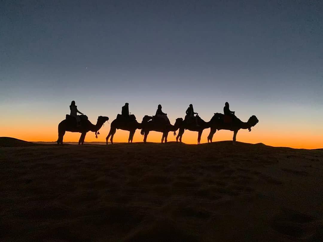 Paseo en camellos con 6 días en Marruecos, ruta desde Fez a Marrakech y el desierto