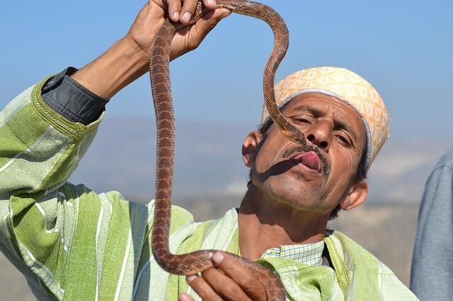 Encantador de serpientes en Marruecos con nuestro blog de viaje