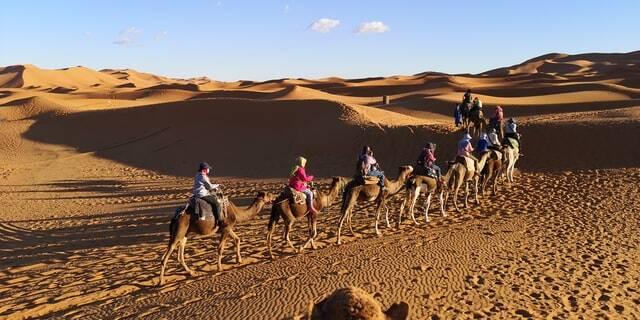 una Caravana de camellos yugan a al desierto. con nuestro Marrakech 6 dias ruta