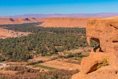 la mayor fuente de fechas es ziz vallley, pasaremos por ella con la mayoría de nuestros tours privados y de grupo por el desierto desde tánger