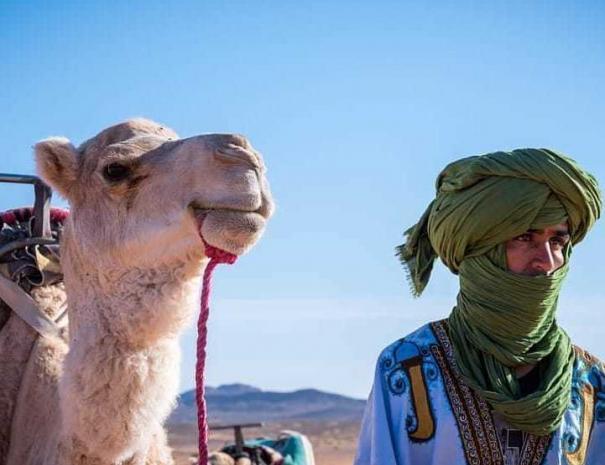 Cammello leader nel deserto del Sahara, sarete guidati da uno di loro con il nostro tour di 9 giorni in Marocco