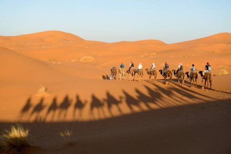 Giro in cammello 4 giorni in Marocco nel deserto del Sahara da Fes a Marrakech
