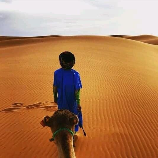 L'uomo berbero che guida i cammelli a Merzouga