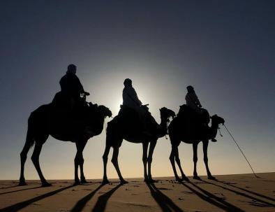 gite in cammello da marrakech