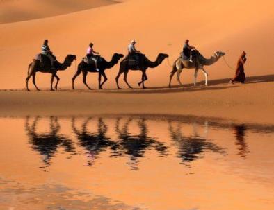 Carovana di cammelli nel deserto di Merzouga, la migliore esperienza che avrete con le nostre escursioni in Marocco da Tangeri