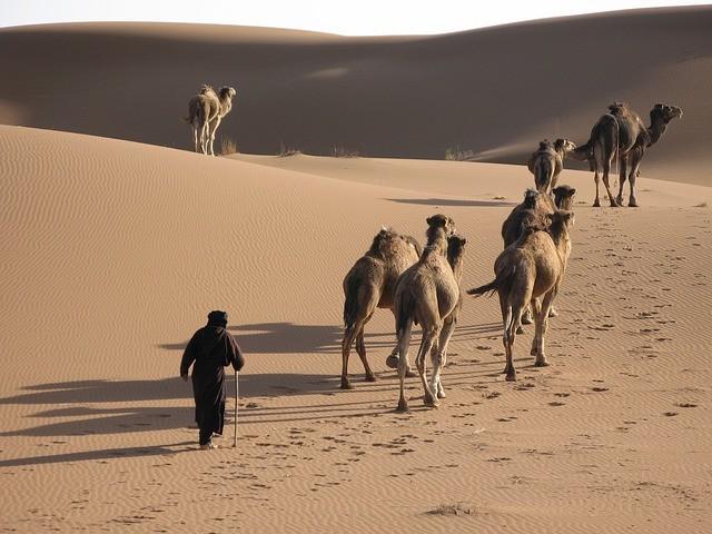 il miglior tour del deserto da marrakech a fes passando per il deserto
