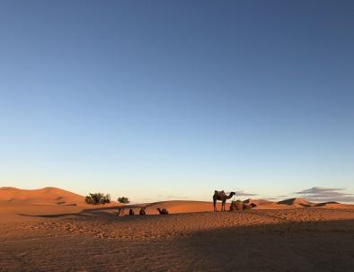 Merzouga itinerario di due giorni a marrakech