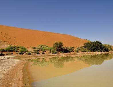 Il deserto del Sahara di Merzouga e un lago
