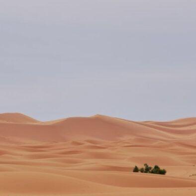 nostri photo di Itinerario di 6 giorni in Marocco, tour da Marrakech a Fes.