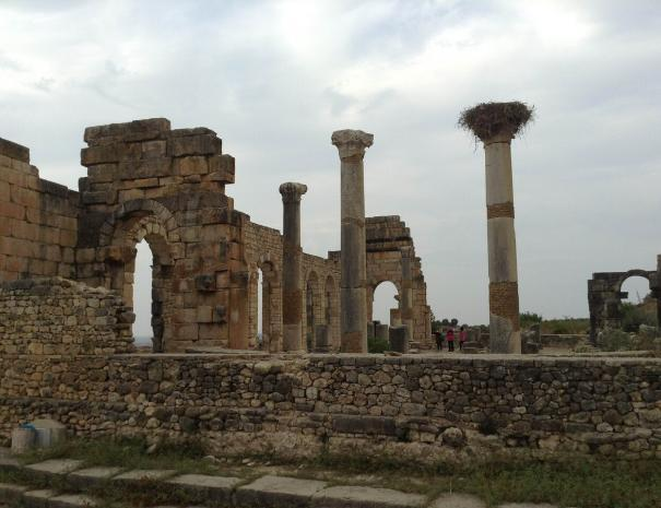 le rovine romane di Meknes