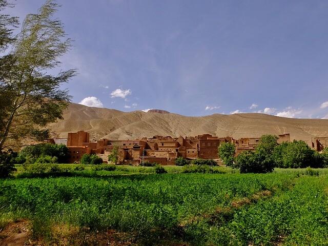 Visita dei terreni agricoli durante la tour di Fes a Marrakech 5 giorni nel deserto