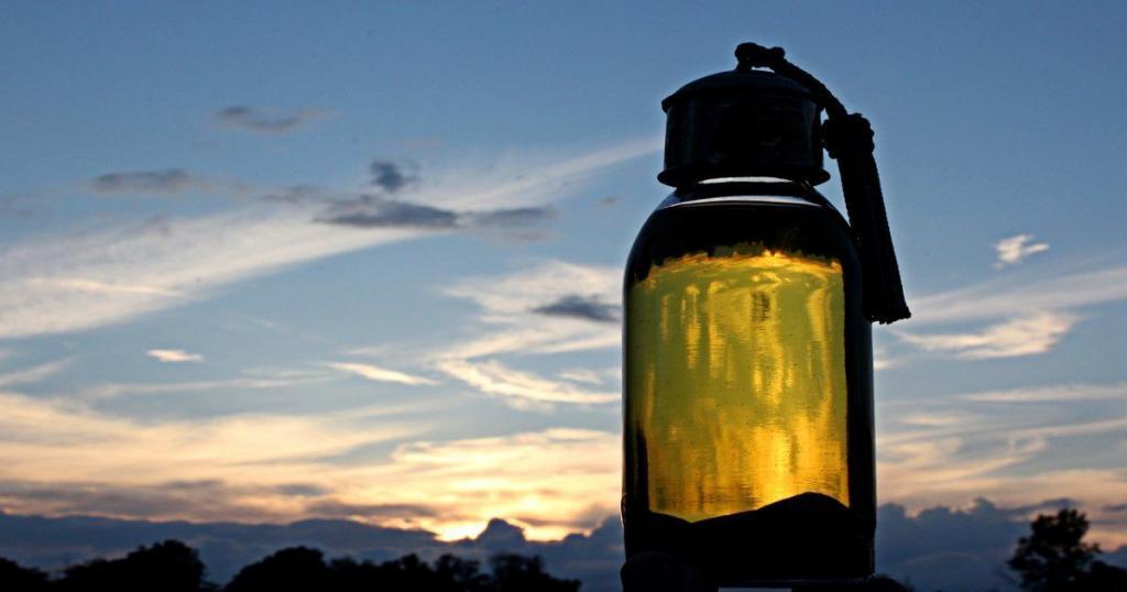 una bottiglia di olio di argan