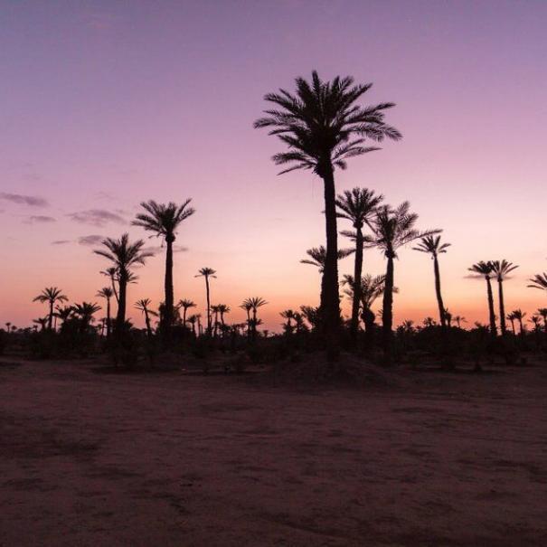 tour di 4 giorni in Marocco da Fes a Marrakech e al deserto del Sahara.