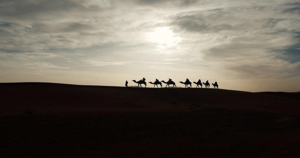Giri in cammello in Marocco