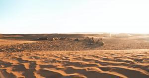 El Sahara del Marocco