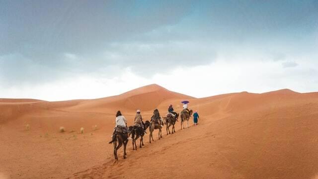 cavalcate sul cammello del deserto del sahara