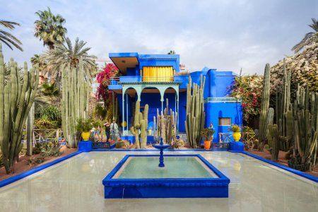 the gardens of jacque majorelle in Marrakech