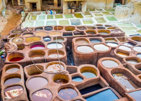 the tannery chouara in Fes