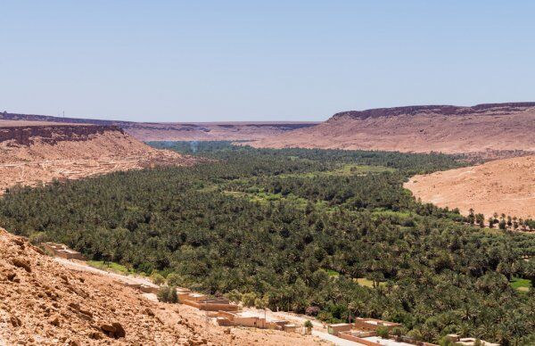 A great way to discover morocco in 1 week itinerary ois to travel to Ziz valley river
