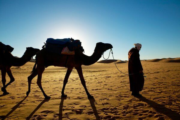Merzouga camel trekking, one day trip