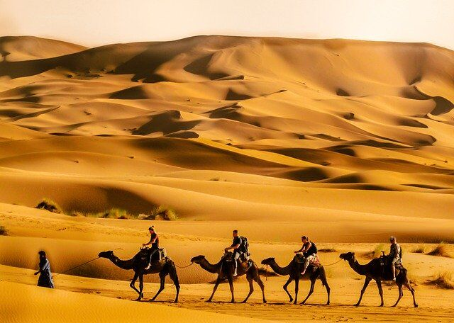 Tours From Marrakech. Customized group, private desert trips.