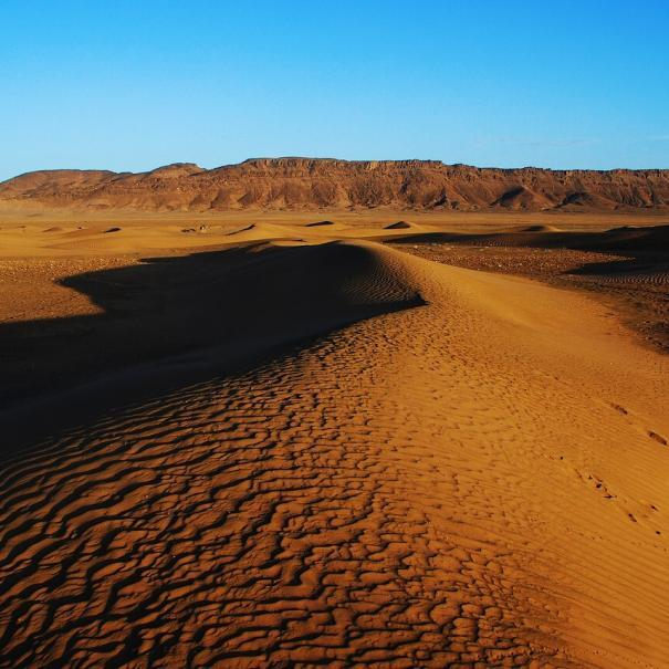 Customized group and private trips, Zagora Morocco tours from Marrakech