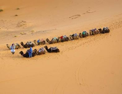 camel rides in morocco, camel trekking, Merzouga desert tour