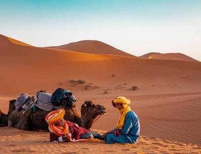 Merzouga camel trekking in the desert