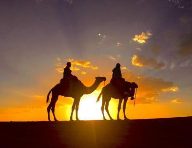 the highligh of our tour itinerary 8 days in Morocco is the camel ride