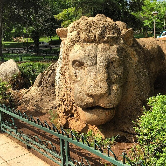 In the picture if the statue of the Atlas lion that is extinct many years ago. Therefore, we will explore it on the 3rd day of our 5 days in Morocco itinerary