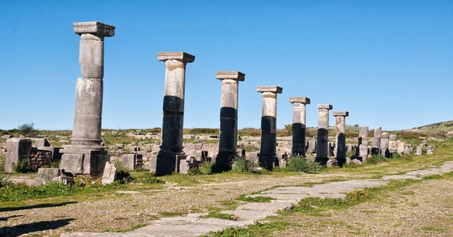 The site of roman ruins Volubilis